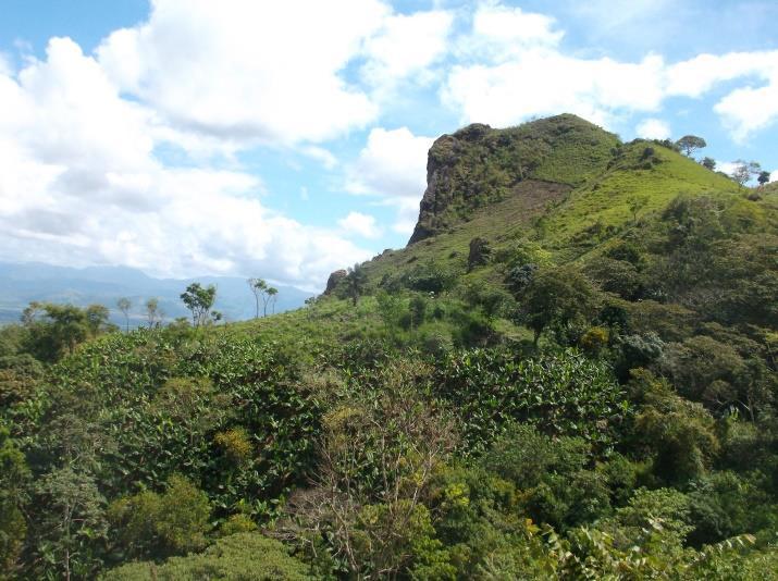Loving Honduras November 2015